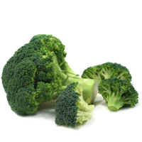 Low Carb High Fat Foods - LCHF :: Broccoli