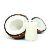 Low Carb High Fat Foods - LCHF :: Coconut Milk