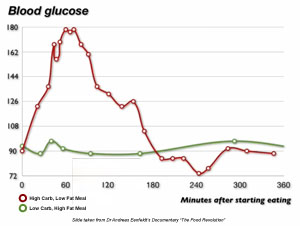 Blood Glucose Levels on Low Carb High Fat